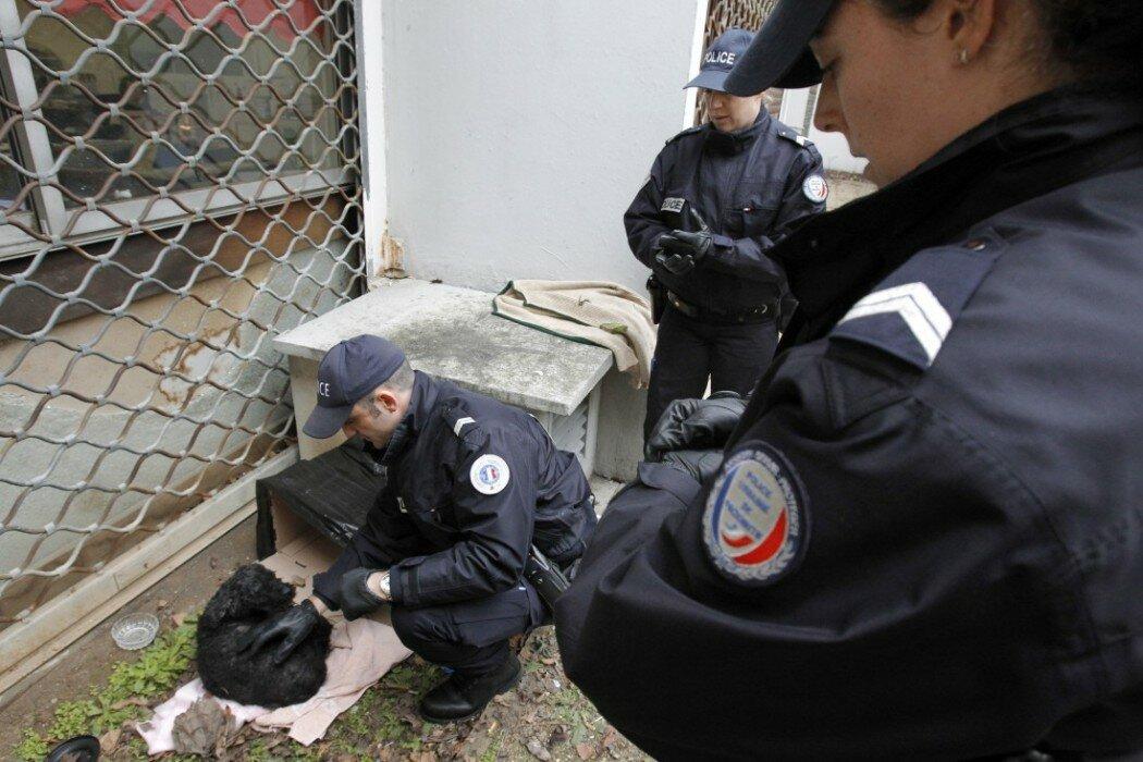 """POUR ILLUSTRER LE PAPIER : """"POLICE-SECOURS (PS17) : LES TOUCHE-A-TOUT DE L'APPEL D'URGENCE"""" - Une équipe Police Secours du commissariat du 15e arrondissement récupère un chien abandonné dans un immeuble, le 17 février 2010 à Paris. Les véritables appels urgents n'ont constitué que 40% des 528.000 appels reçus par police-secours à Paris en 2009, les 60% restants concernant des demandes de renseignements. AFP PHOTO PATRICK KOVARIK"""