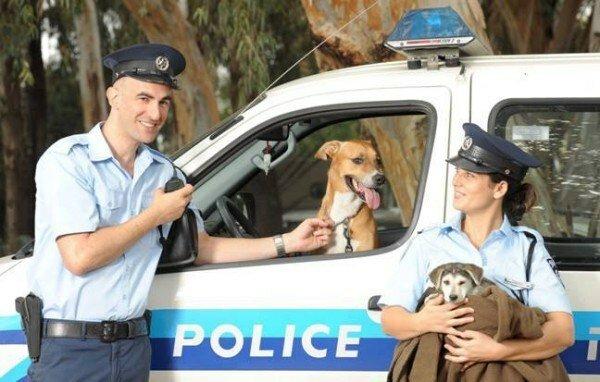 politsiya-izrail